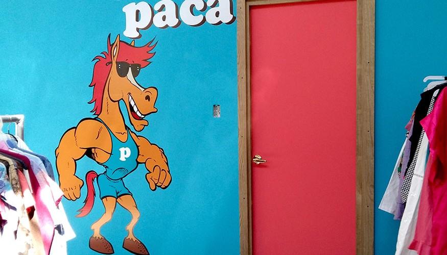 paca3