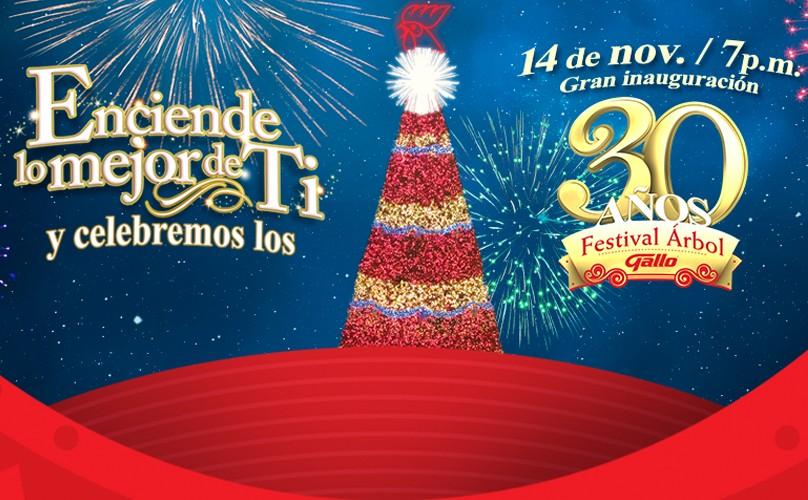 30 Festival Árbol Gallo