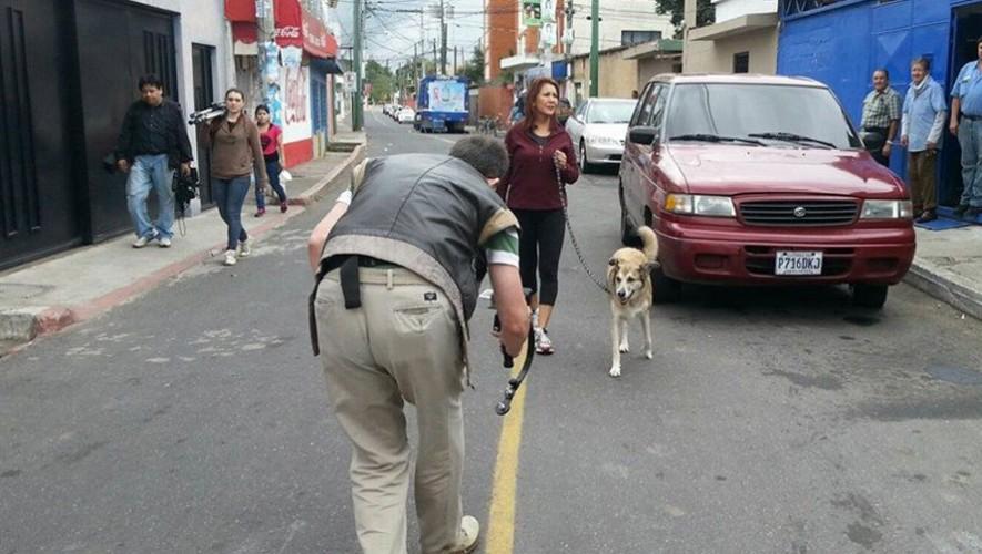 La película Fichulais cuenta la historia de un perro callejero que fue rescatado. (Foto: Facebook Fichulais Delcarmen)