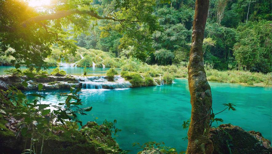 (Foto tomada de Perhaps you need a little Guatemala)