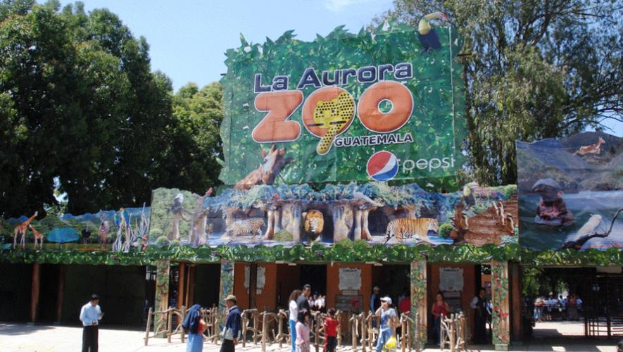 Noche de Película en el Zoológico | Abril 2016