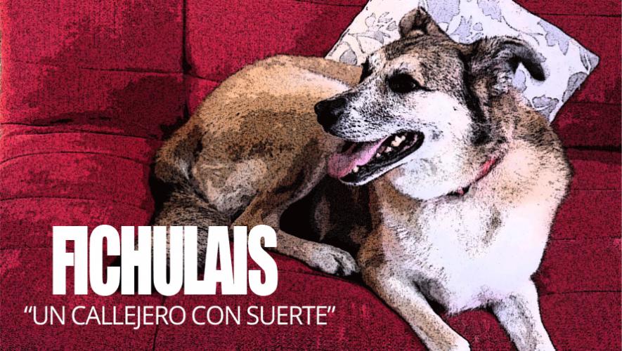 """""""Fichulais: Un callejero con suerte"""" se estrena el 12 de abril. (Foto: Mario Rodríguez)"""