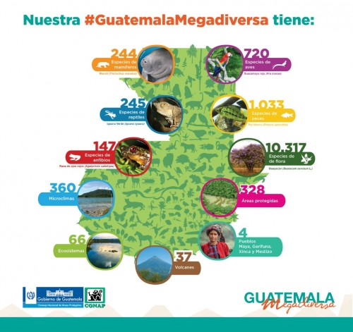 GuatemalaMegadiversaOK