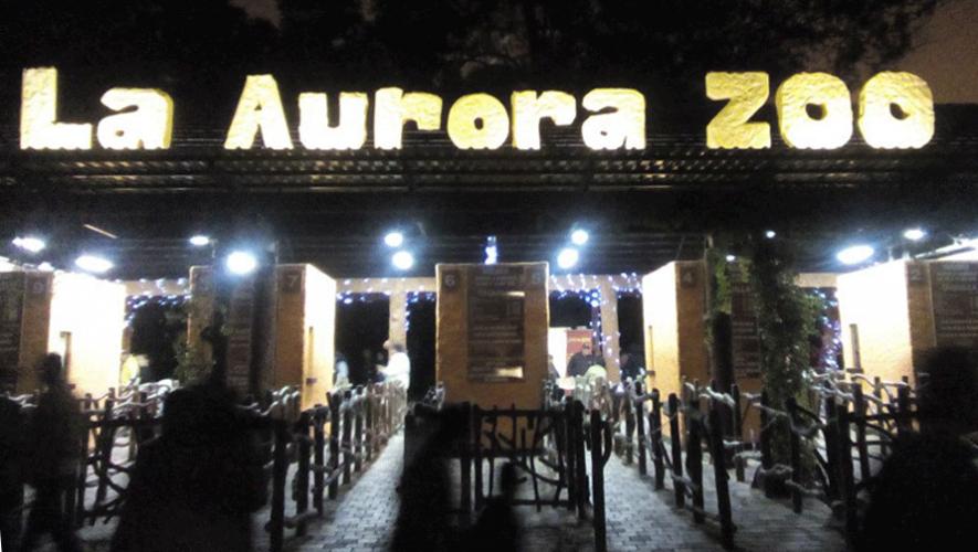 Tercera Noche de Luna en Zoológico La Aurora | Marzo 2017