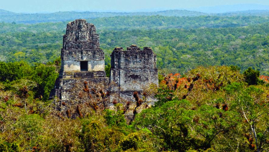Tikal se encuentra entre los primeros 20 mejores destinos del mundo, según Lonely Planet. (Foto: Steve Hanna)