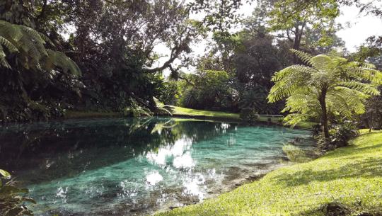 Visita Estas Hermosas Fincas En Guatemala Que Cuidan De La