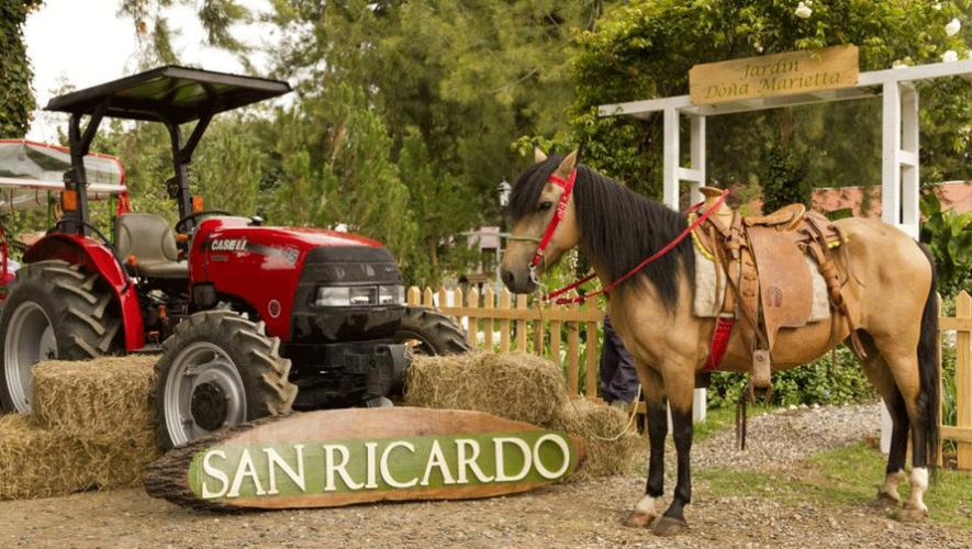 (Foto: San Ricardo Farm-Lodge)