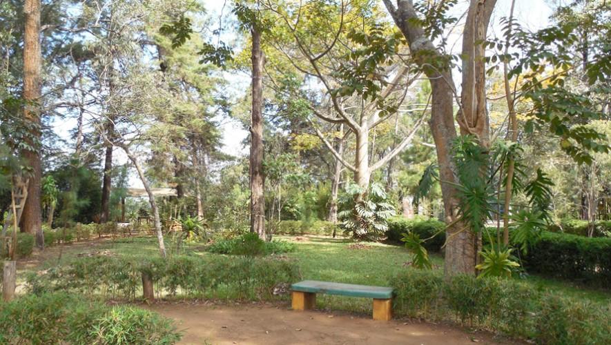 (Foto: Parque Ecológico Ciudad Nueva)