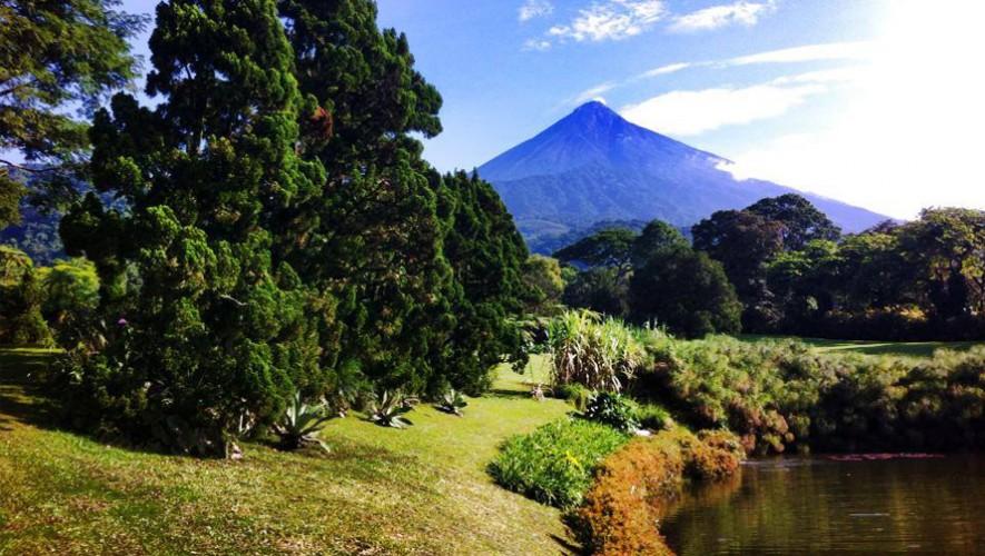 Visita por un día Finca El Zapote en Guatemala | Julio 2016