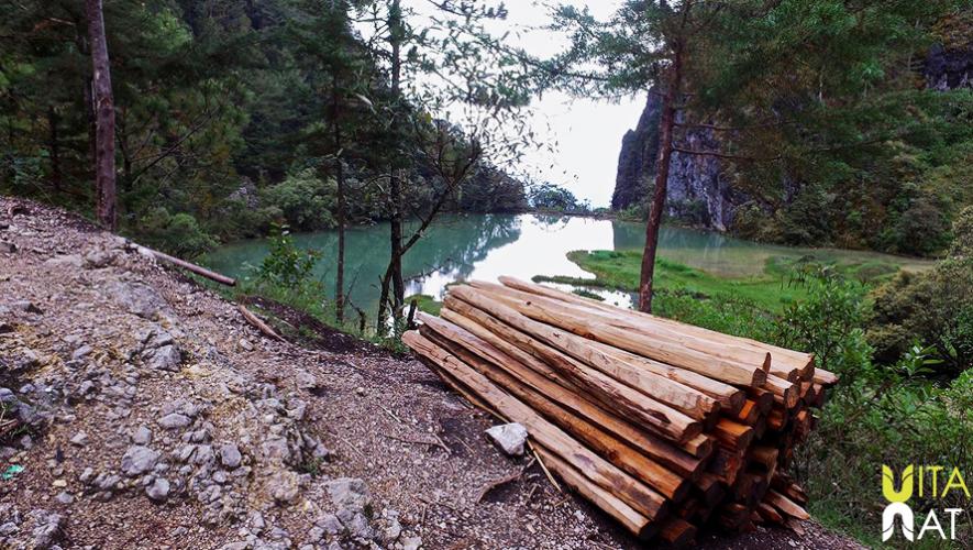 En el lugar existe basura y tala de árboles que afecta la preservación de la laguna. (Foto: VitaNat)