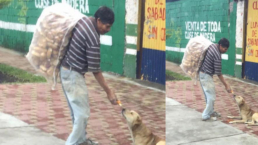 Él es don Chema, el guatemalteco que toma parte de su sueldo para alimentar a los perros callejeros. (Foto: Rescue Program GT)