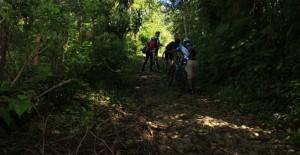 (Foto: Cycling)