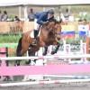 Escuela de Equitación El Cortijo