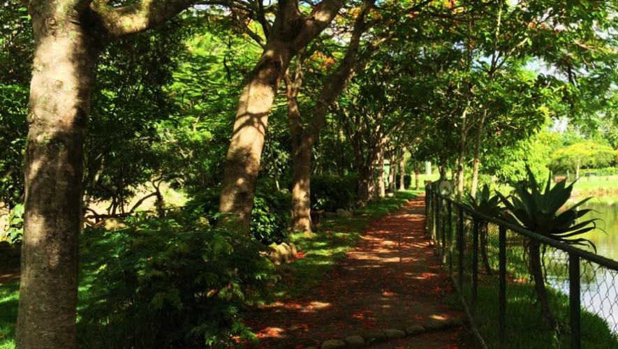 (Foto: Parque Chatun)
