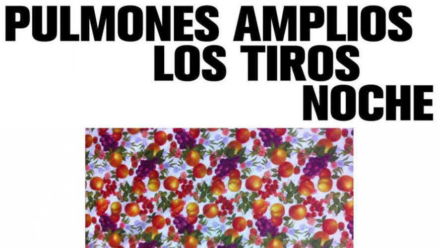 Concierto Pulmones Amplios, Los Tiros y Noche en La Mancha del Quijote | Agosto 2016