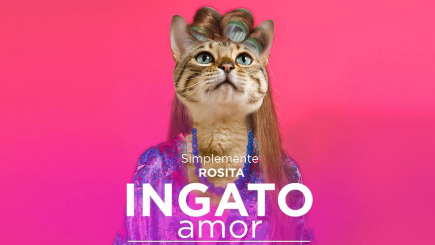 """Simplemente Rosita presenta """"Ingato Amor"""" en La Casa Centro Cultural  Septiembre 2016"""