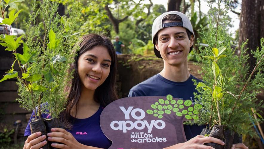 Mega Siembra de 15 mil árboles en Escuintla | Agosto 2016
