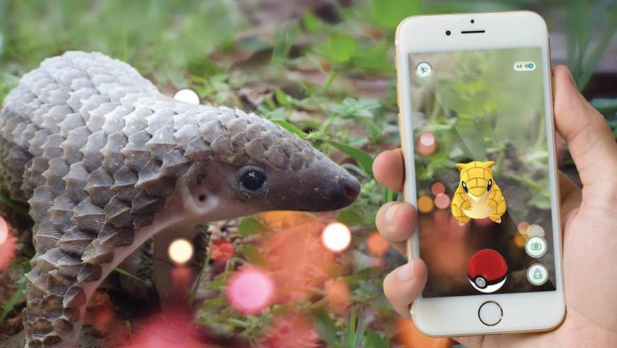 Sunday Funday: Foodtrucks y Pokémones en el Zoológico La Aurora | Agosto 2016