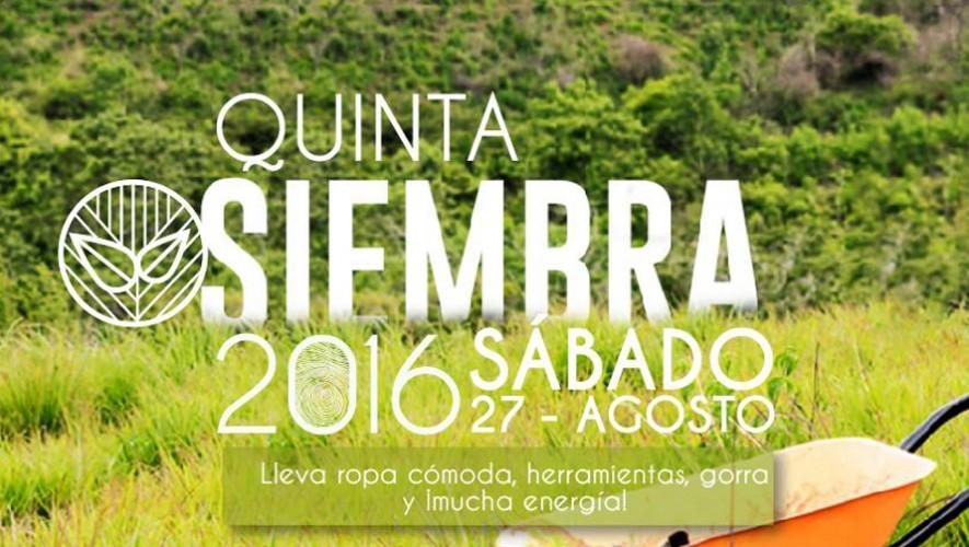 Quinta Plantación de 1,000 Árboles en Mixco | Agosto 2016