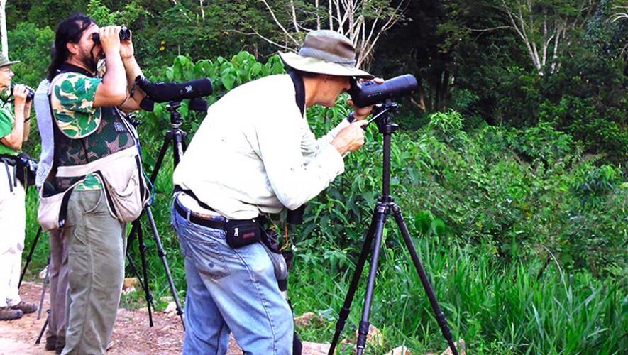 Aprende a fotografiar aves con Ricardo Ubico. (Foto: Cajamarca Travel)