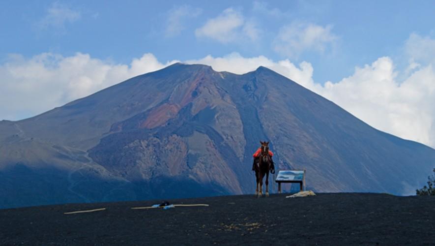 Subir el volcán de Pacaya en Guatemala es uno de los mayores atractivos de los turistas. (Foto: Michael Steel)