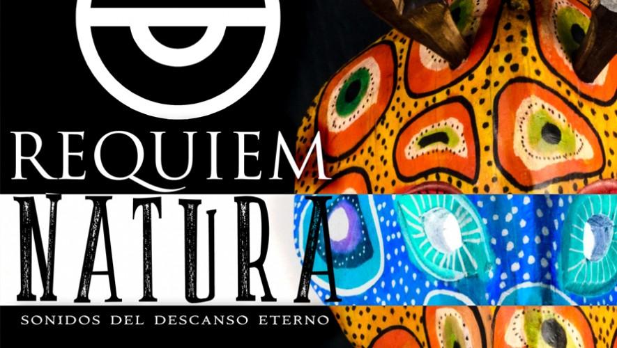 Concierto Réquiem Natura de Axel Avendaño en el Teatro Nacional | Septiembre 2016