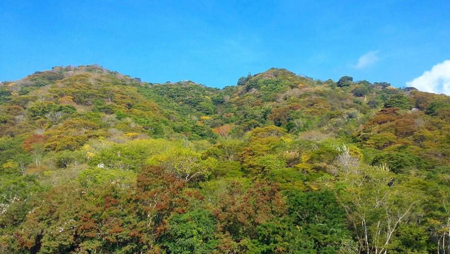 (Foto: Reserva Natural para la Conservación del Heloderma y el Bosque seco)