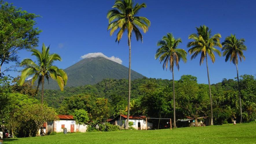 (Foto: Los Tarrales Hotel, Natural Reserve & Birding Tours)