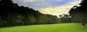 (Foto: ampeonato Nacional de Golf)