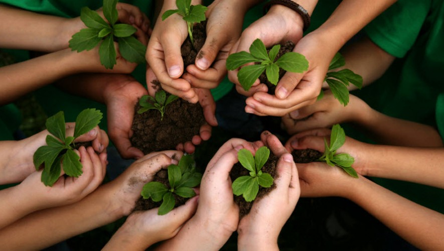 Plantación de árboles en la UNIS con Happy People   Noviembre 2016