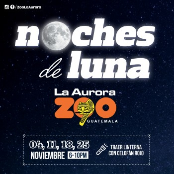 NOCHES DE LUNA_FB POST 1 copy