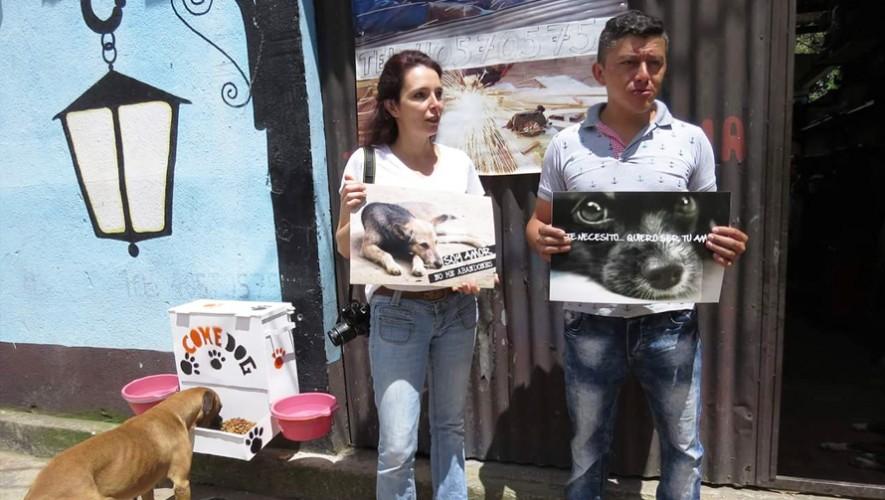 La pareja de esposos Britz son los creadores del ComeDog. (Foto: Noticiero el Gráfico de Sacatepéquez)