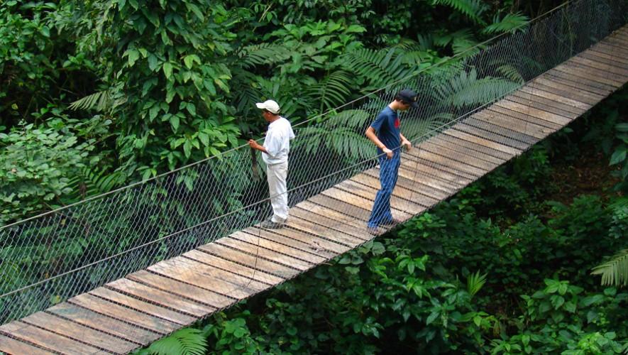 (Foto: Reserva Natural Patrocinio)