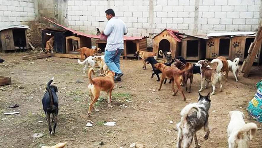 (Foto:Asociación Guatemalteca Mano Amiga)