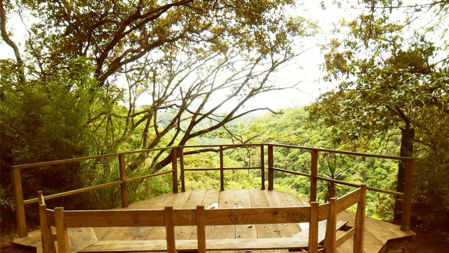 (Foto:Parque Ecológico Ciudad Nueva)