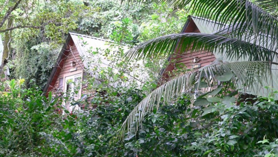 (Foto: Hacienda Tijax Jungle Ecolodge)