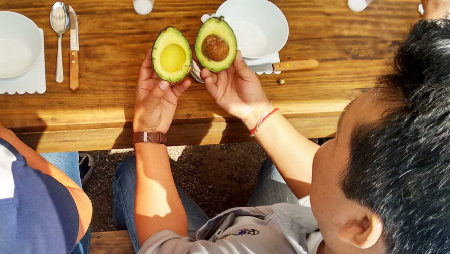 (Foto: The Avocado Tour)