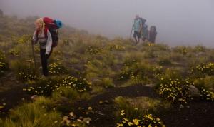 ascenso-volcan-acatenango
