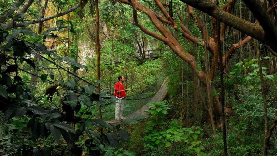 (Foto: Reserva Natural Atitlán)