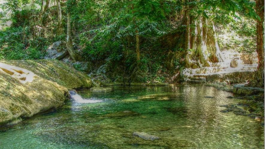 Sendero las escobas lugares que tienes que visitar si viajas a izabal guatemala - Escobas de palma ...
