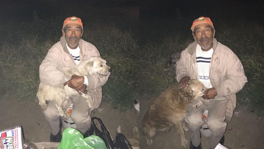 Don Maquito de 70 años cuida con lo poco que tiene a sus 13 perros. (Foto: Rescates Yo Amo la Creación Guatemala)