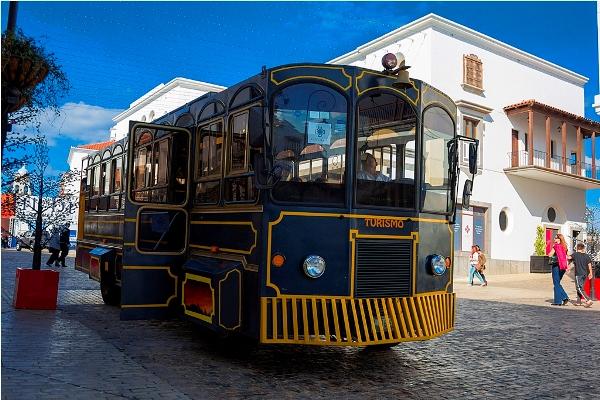 Copia de trolley cayala 3