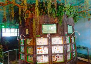 Museo de Historia Natural de la Universidad de San Carlos