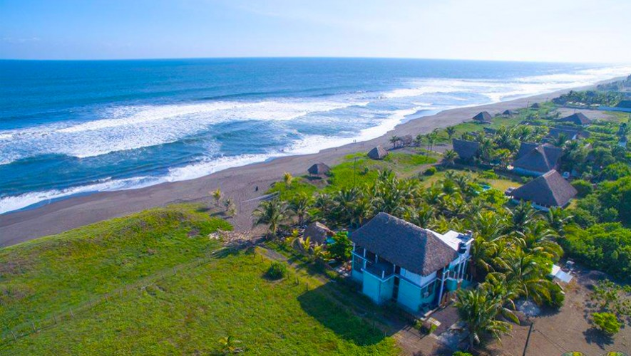 The Driftwood Surfer Beach Hostel gana reconocimiento de Trip Advisor
