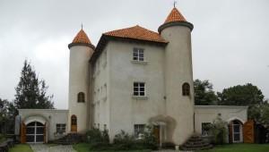Tour del vino en Viñedo Chateau Defay