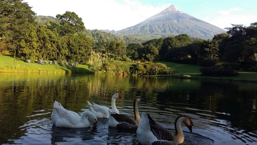 Celebración para parejas a Finca el Zapote en Escuintla   Febrero 2017