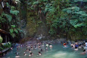 (Foto: Tito Tours & Adventures)