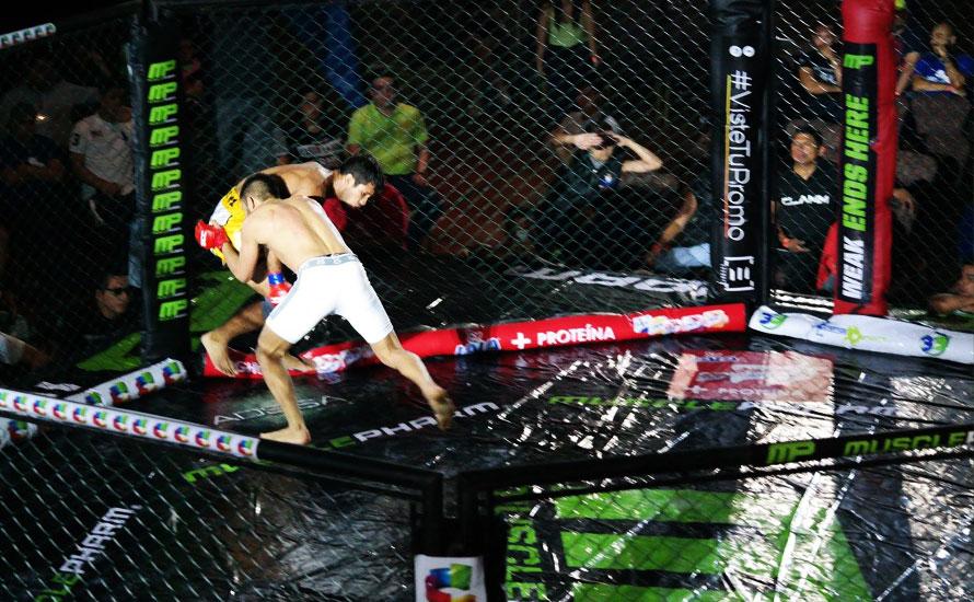 Peleas MMA