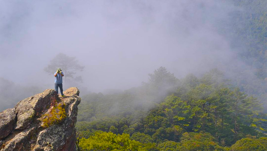 bosques nubosos en Guatemala