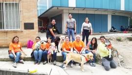Cómo puedo inscribir a mi mascota para hacer terapia asistida en Guatemala